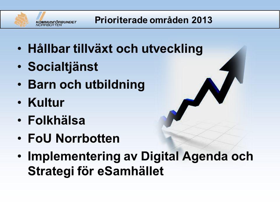 Prioriterade områden 2013 Hållbar tillväxt och utveckling Socialtjänst Barn och utbildning Kultur Folkhälsa FoU Norrbotten Implementering av Digital Agenda och Strategi för eSamhället