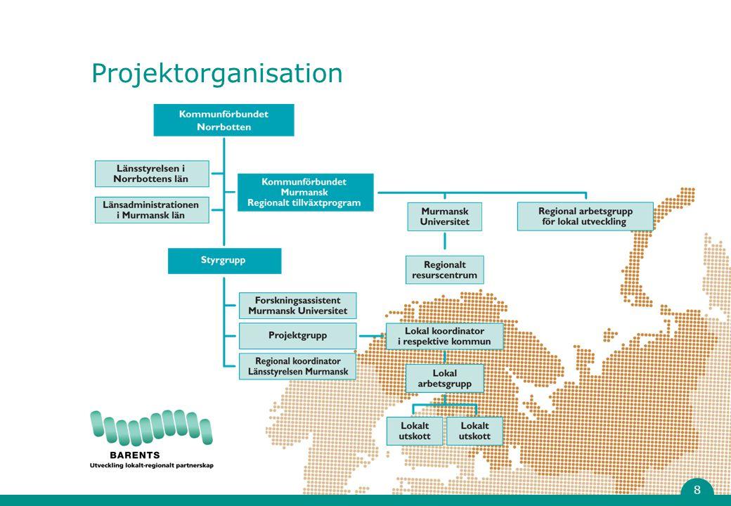 Projektorganisation 8