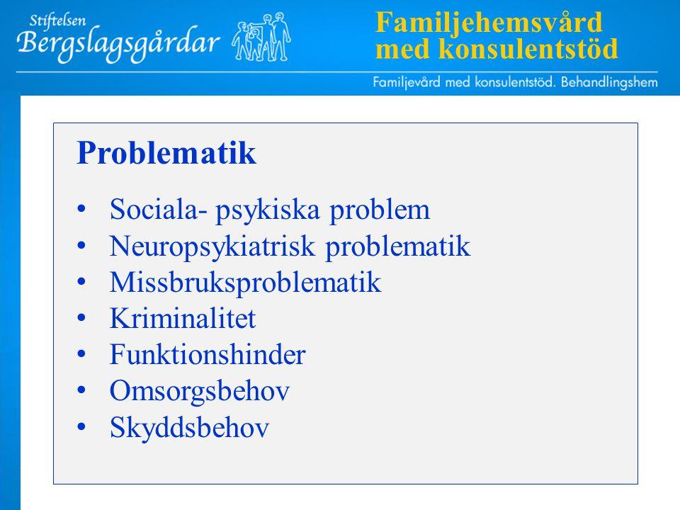 Problematik Sociala- psykiska problem Neuropsykiatrisk problematik Missbruksproblematik Kriminalitet Funktionshinder Omsorgsbehov Skyddsbehov Familjehemsvård med konsulentstöd