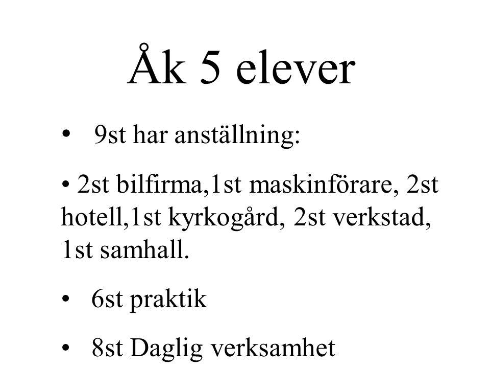 9st har anställning: 2st bilfirma,1st maskinförare, 2st hotell,1st kyrkogård, 2st verkstad, 1st samhall.