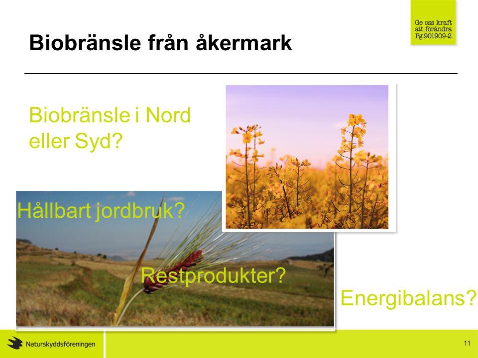 Biobränsle från åkermark 11 Biobränsle i Nord eller Syd.