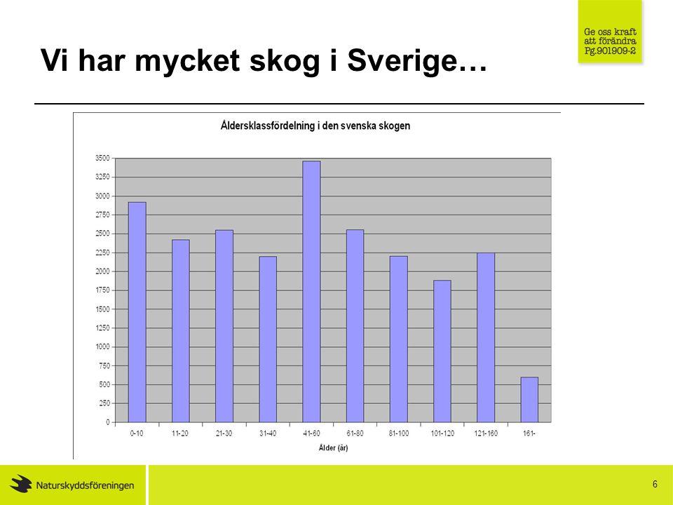 Vi har mycket skog i Sverige… 6