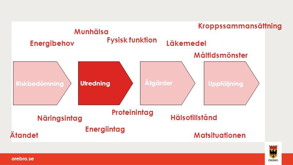 orebro.se Riskbedömning Utredning Åtgärder Uppföljning Munhälsa Läkemedel Energiintag Näringsintag Hälsotillstånd Kroppssammansättning Fysisk funktion