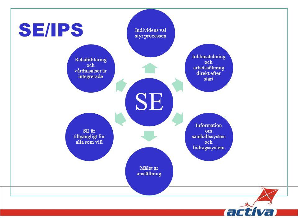 SE Individens val styr processen Jobbmatchning och arbetssökning direkt efter start Information om samhällssystem och bidragssystem Målet är anställni