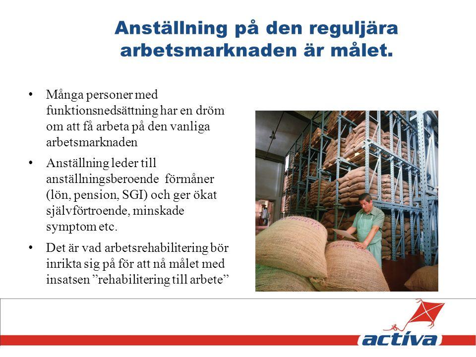 Anställning på den reguljära arbetsmarknaden är målet. Många personer med funktionsnedsättning har en dröm om att få arbeta på den vanliga arbetsmarkn