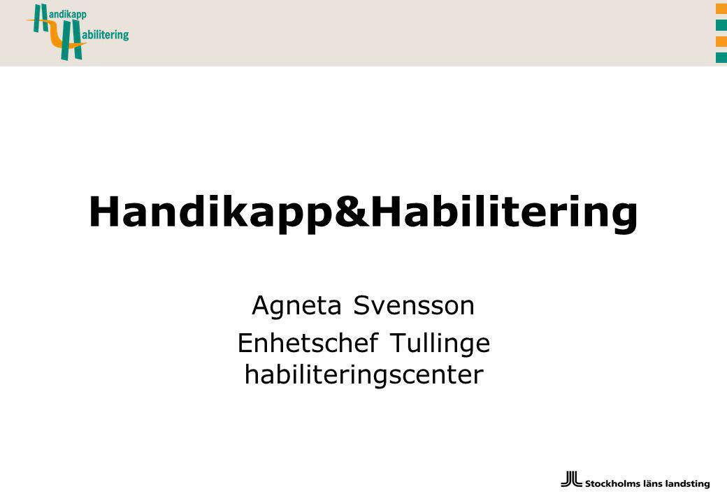 Agneta Svensson Enhetschef Tullinge habiliteringscenter Handikapp&Habilitering