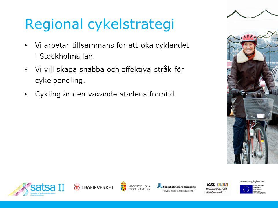 Projektets innehåll Regional cykelstrategi är ett av tre delprojekt i EU-projektet SATSA II.