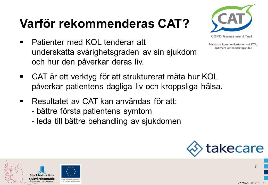 v ersion 2012-10-16 9 KOL självtest enligt CAT Hur kan vi använda webbskattningen CAT?