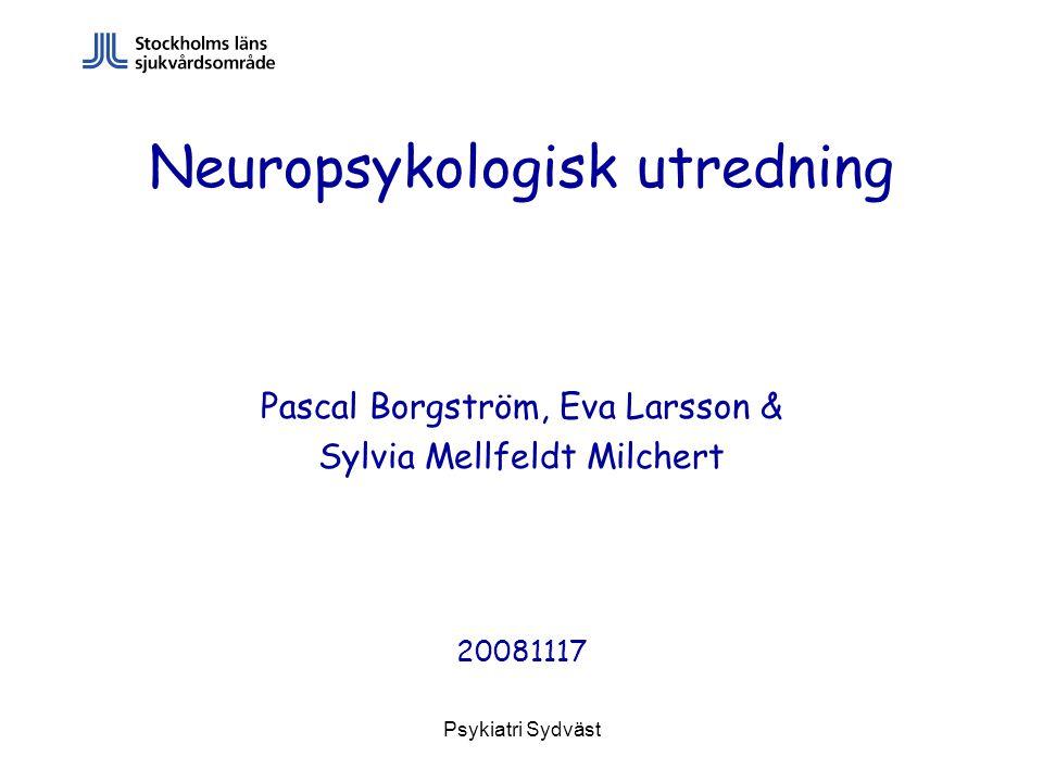 Psykiatri Sydväst Neuropsykologisk utredning Pascal Borgström, Eva Larsson & Sylvia Mellfeldt Milchert 20081117