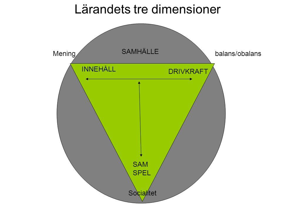 Lärandets tre dimensioner SAM SPEL INNEHÅLL DRIVKRAFT SAMHÄLLE Meningbalans/obalans Socialitet