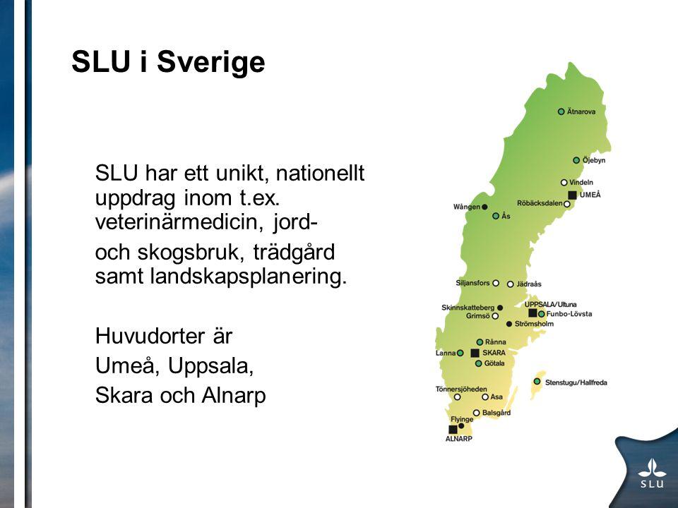 SLU i Sverige SLU har ett unikt, nationellt uppdrag inom t.ex. veterinärmedicin, jord- och skogsbruk, trädgård samt landskapsplanering. Huvudorter är