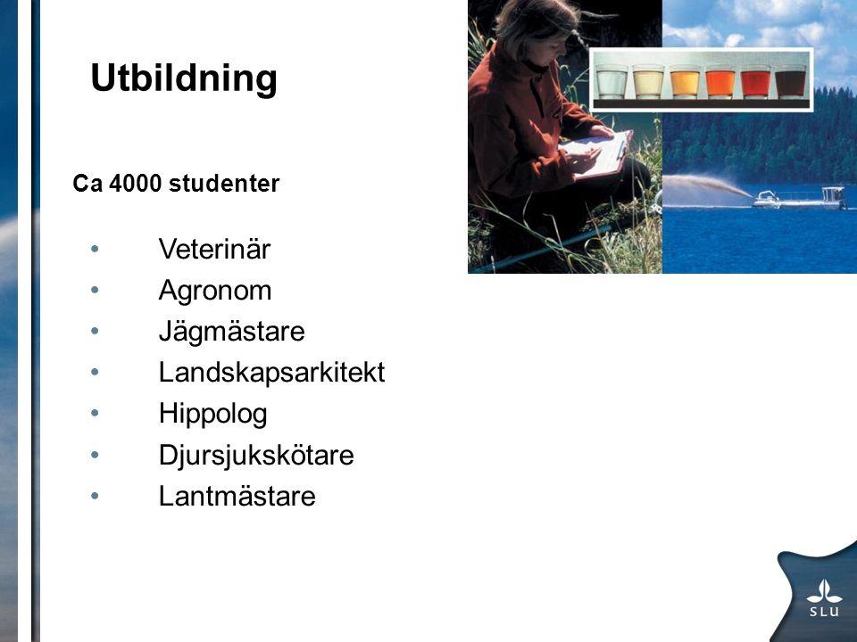 Utbildning Ca 4000 studenter Veterinär Agronom Jägmästare Landskapsarkitekt Hippolog Djursjukskötare Lantmästare