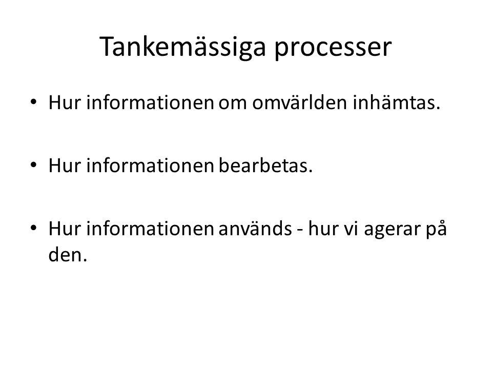Tankemässiga processer Hur informationen om omvärlden inhämtas. Hur informationen bearbetas. Hur informationen används - hur vi agerar på den.