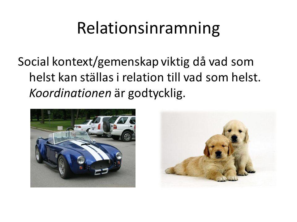 Relationsinramning Social kontext/gemenskap viktig då vad som helst kan ställas i relation till vad som helst.