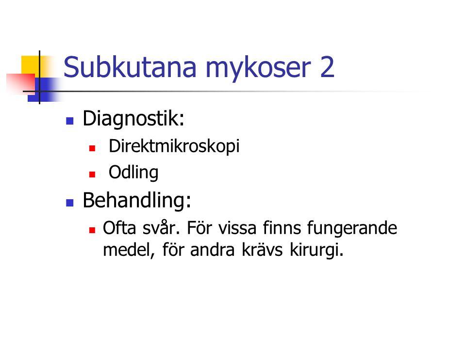 Subkutana mykoser 2 Diagnostik: Direktmikroskopi Odling Behandling: Ofta svår. För vissa finns fungerande medel, för andra krävs kirurgi.