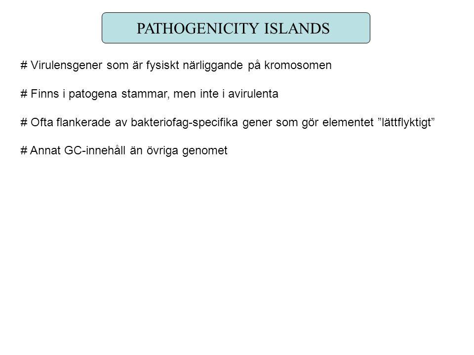 PATHOGENICITY ISLANDS # Virulensgener som är fysiskt närliggande på kromosomen # Finns i patogena stammar, men inte i avirulenta # Ofta flankerade av bakteriofag-specifika gener som gör elementet lättflyktigt # Annat GC-innehåll än övriga genomet