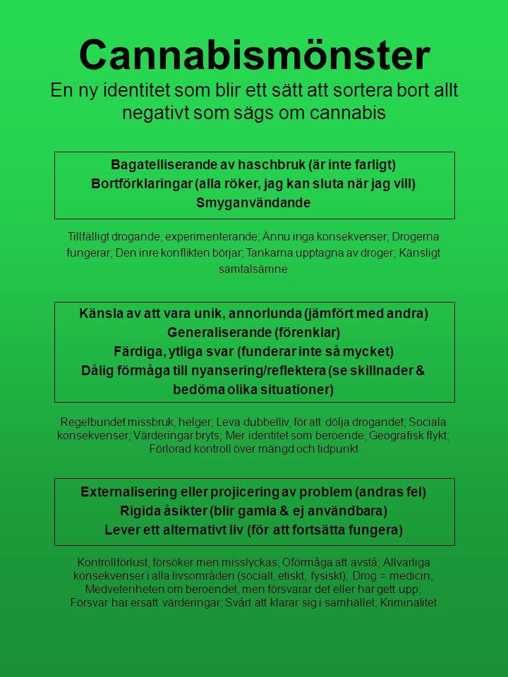 """Cannabispersonlighet """"inte farligare än alkohol"""" """"jag blir kreativ när jag röker"""" """"jag kan sluta när jag vill"""" """"alla röker cannabis"""" Cannabis mönster"""