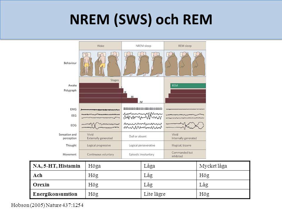 NREM (SWS) och REM NA, 5-HT, HistaminHögaLågaMycket låga AchHögLågHög OrexinHögLåg EnergikonsumtionHögLite lägreHög Hobson (2005) Nature 437:1254
