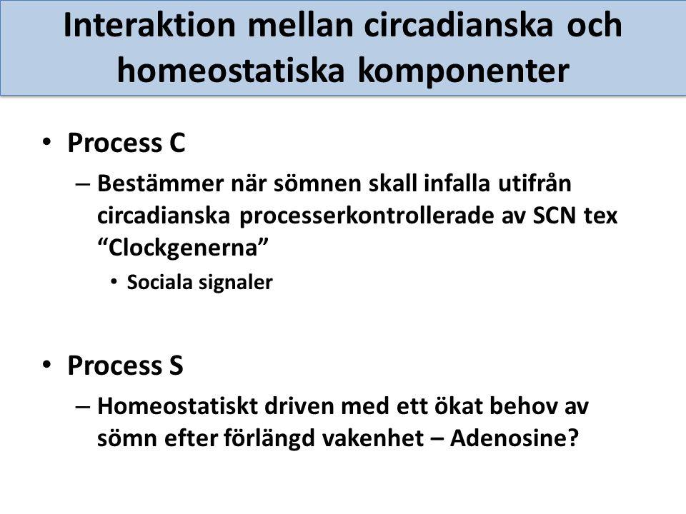 Interaktion mellan circadianska och homeostatiska komponenter Process C – Bestämmer när sömnen skall infalla utifrån circadianska processerkontrollera