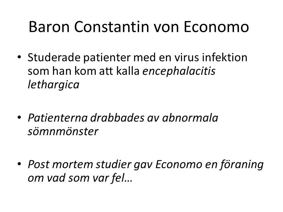 Baron Constantin von Economo Studerade patienter med en virus infektion som han kom att kalla encephalacitis lethargica Patienterna drabbades av abnor