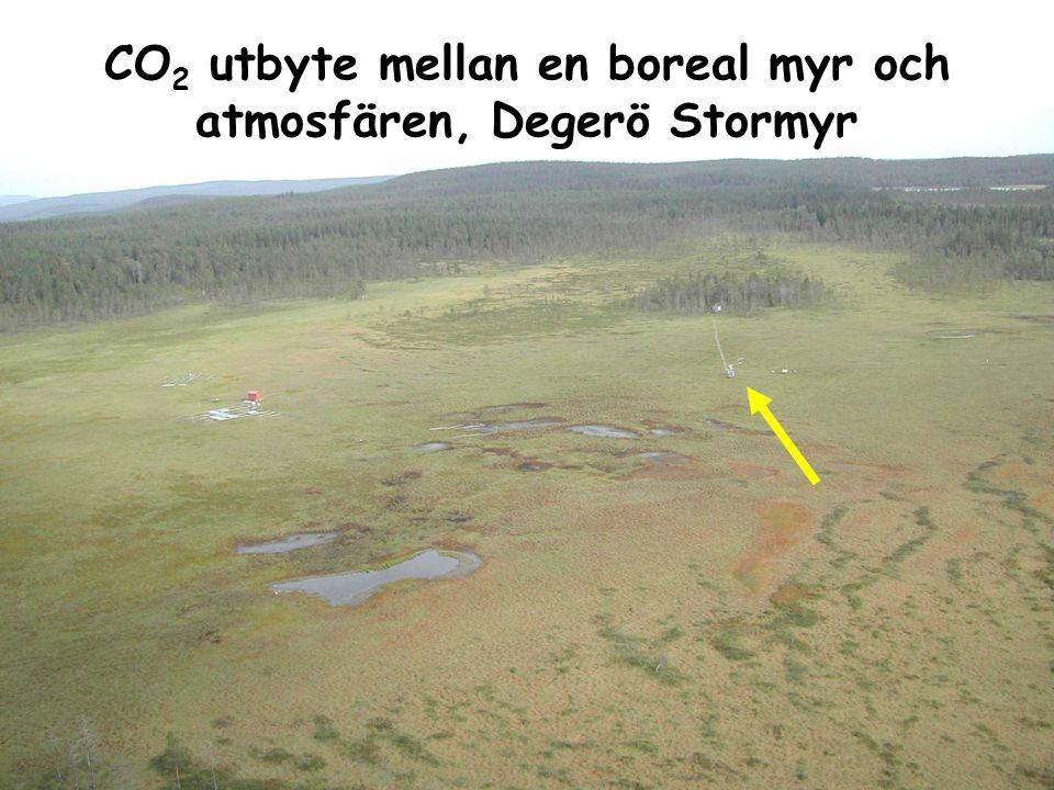 Swedish University of Agricultural Sciences www.slu.se CO 2 utbyte mellan en boreal myr och atmosfären, Degerö Stormyr