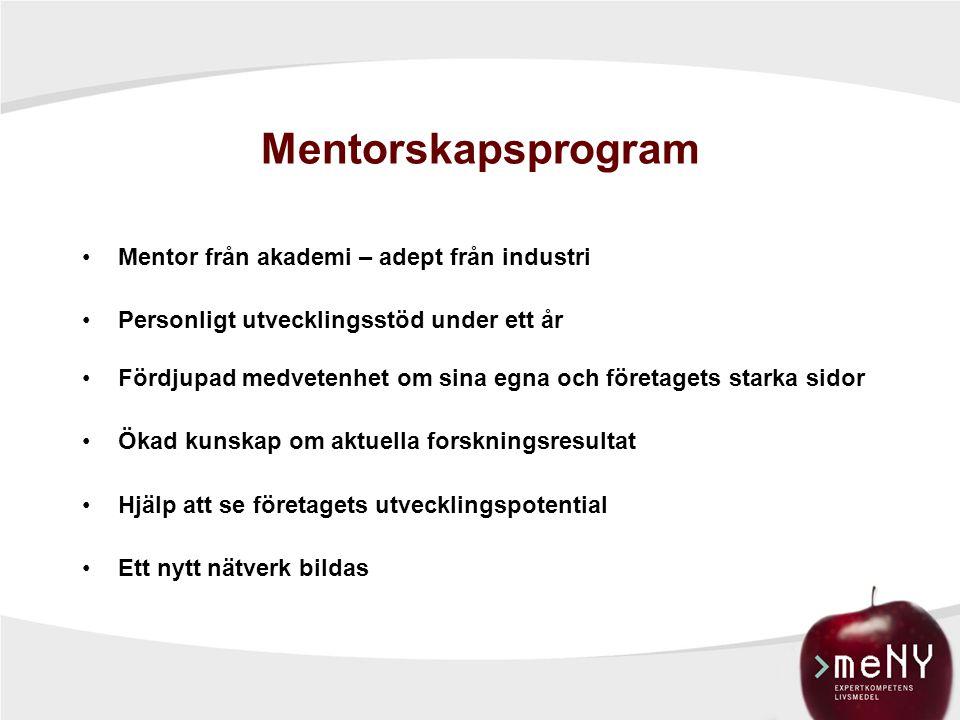 Vad ger mentorskapsprogrammet dig. Man får ett bollplank utanför koncernen.