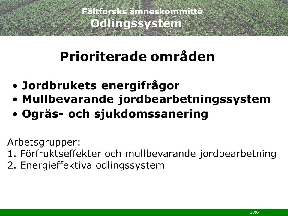 2007 Arbetsgrupper: 1.Förfruktseffekter och mullbevarande jordbearbetning 2.
