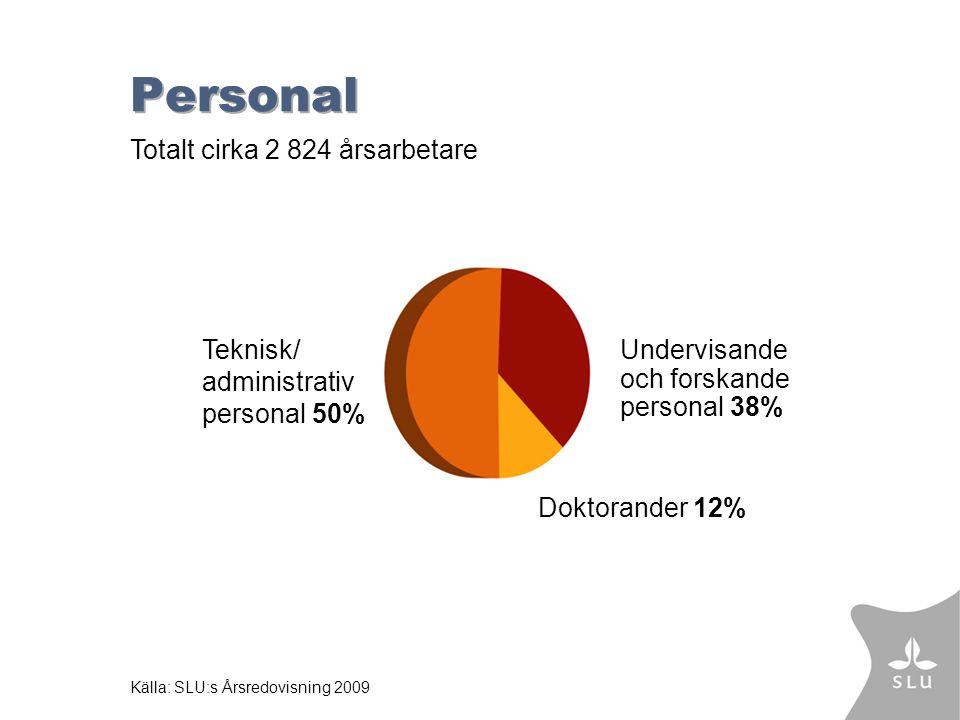 Personal Doktorander 12% Undervisande och forskande personal 38% Teknisk/ administrativ personal 50% Källa: SLU:s Årsredovisning 2009 Totalt cirka 2 824 årsarbetare