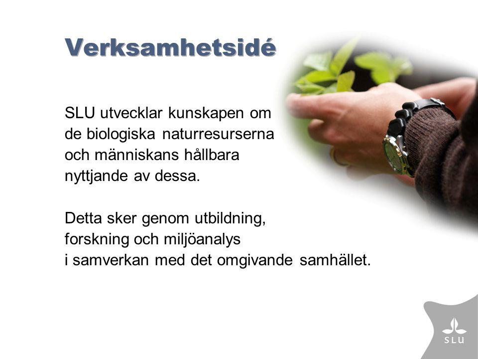Verksamhetsidé SLU utvecklar kunskapen om de biologiska naturresurserna och människans hållbara nyttjande av dessa.