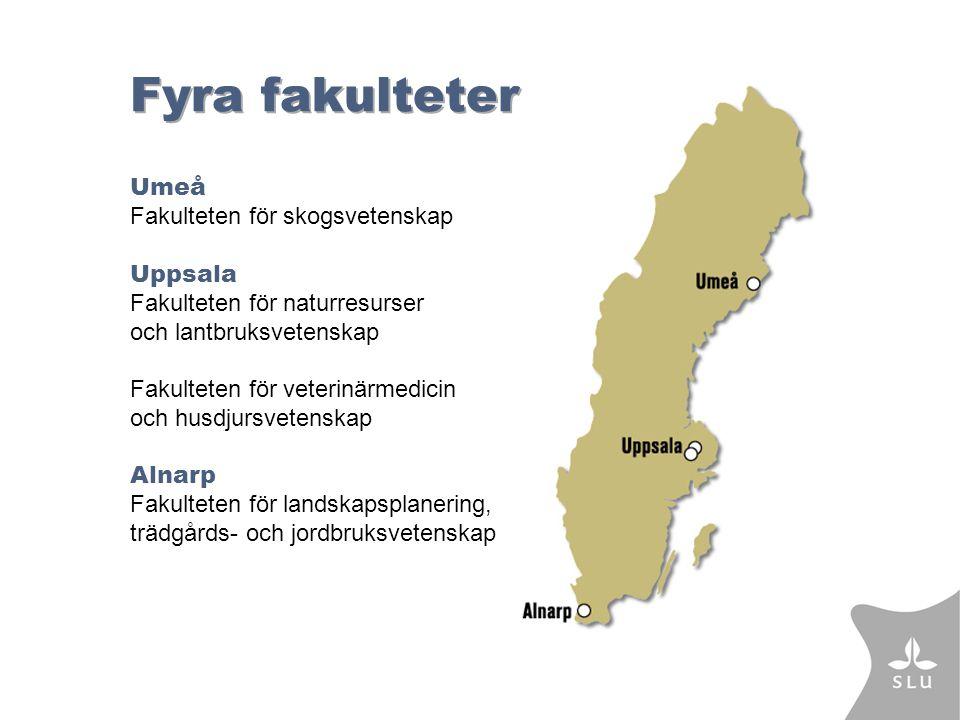 Fyra fakulteter Umeå Fakulteten för skogsvetenskap Uppsala Fakulteten för naturresurser och lantbruksvetenskap Fakulteten för veterinärmedicin och husdjursvetenskap Alnarp Fakulteten för landskapsplanering, trädgårds- och jordbruksvetenskap