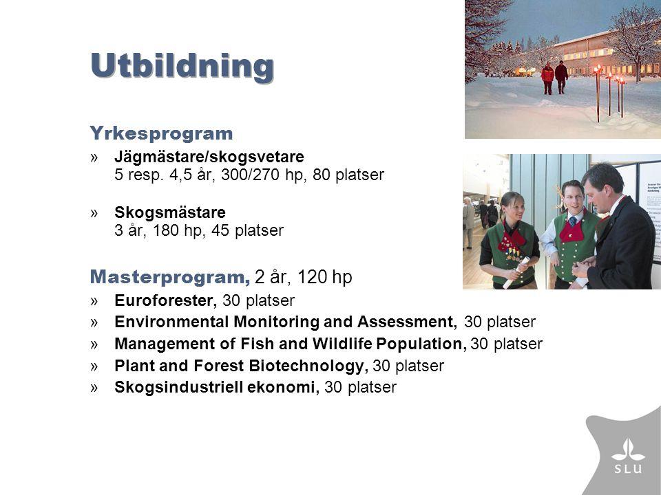 Utbildning Yrkesprogram »Jägmästare/skogsvetare 5 resp.