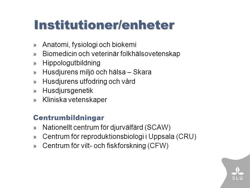 Institutioner/enheter » Anatomi, fysiologi och biokemi » Biomedicin och veterinär folkhälsovetenskap » Hippologutbildning » Husdjurens miljö och hälsa – Skara » Husdjurens utfodring och vård » Husdjursgenetik » Kliniska vetenskaper Centrumbildningar » Nationellt centrum för djurvälfärd (SCAW) » Centrum för reproduktionsbiologi i Uppsala (CRU) » Centrum för vilt- och fiskforskning (CFW)