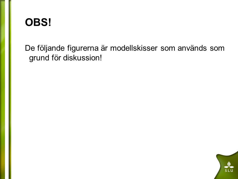 OBS! De följande figurerna är modellskisser som används som grund för diskussion!