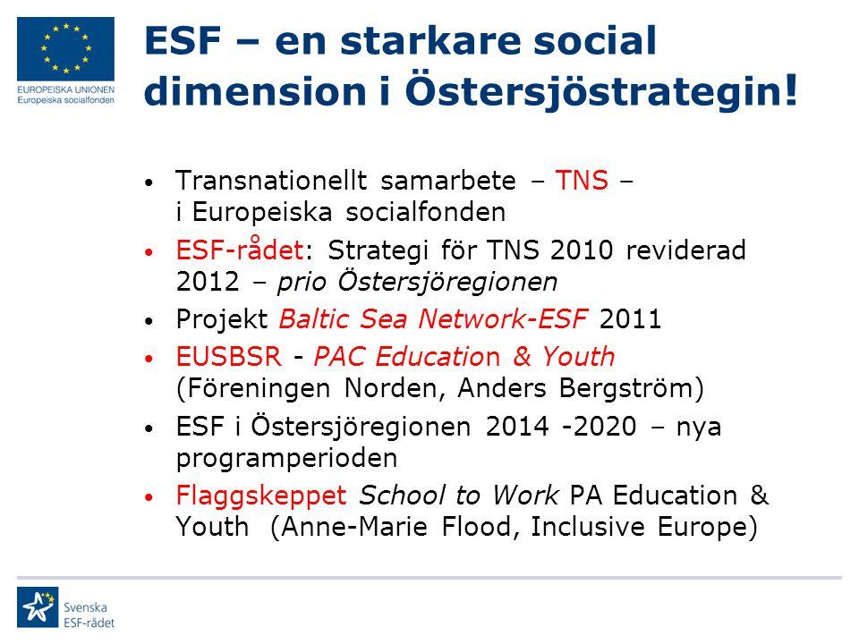 TNS i ESF 2007 - 2013 Drygt 2000 projekt 336 med TNS 60 i Östersjöregionen Skiftande kvalitet Rekommendationer, revision: Från kvantitet till kvalitet Tydligare fokus Mervärde TNS Prio Östersjöregionen