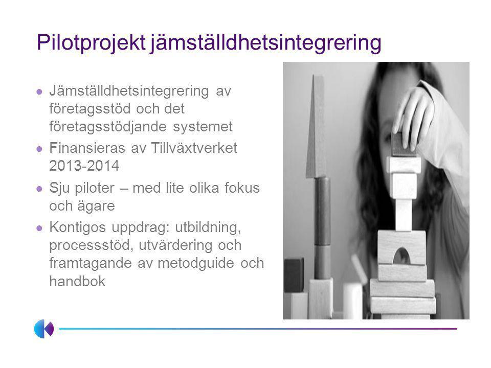 Pilotprojekt jämställdhetsintegrering ● Jämställdhetsintegrering av företagsstöd och det företagsstödjande systemet ● Finansieras av Tillväxtverket 20