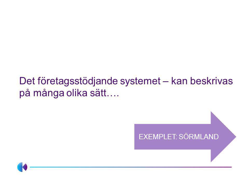 Det företagsstödjande systemet – kan beskrivas på många olika sätt…. EXEMPLET: SÖRMLAND
