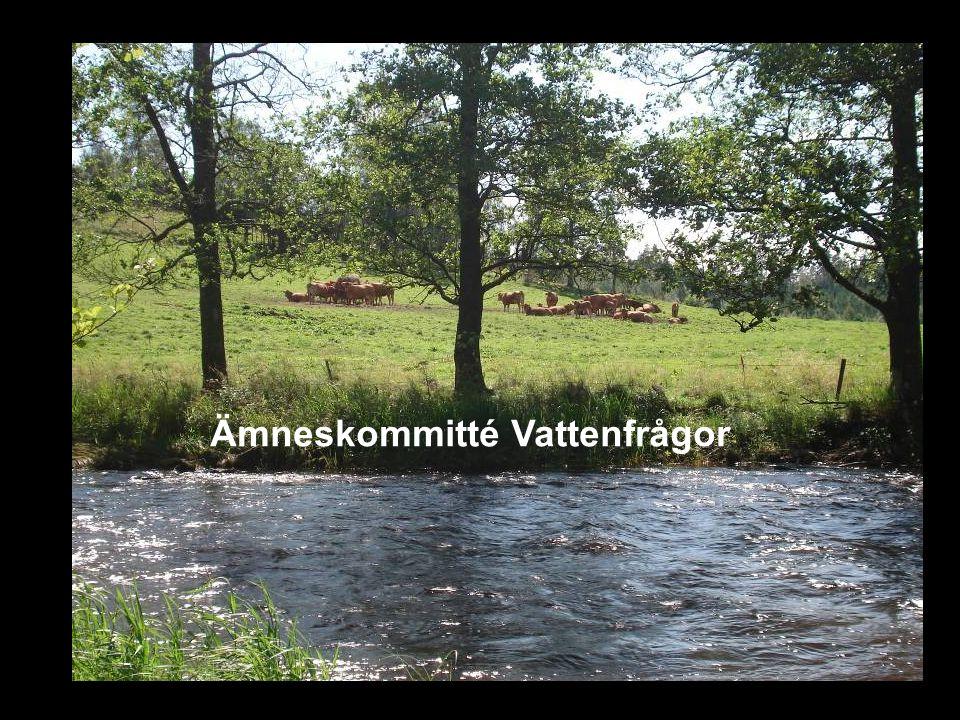 Avdelningen för hydroteknik Forskning bedrivs inom fyra huvudområden ( 7 disputerade forskare/lärare ) Jordbrukslandskapets hydrologi och markvattnets reglering (2 doktorander) Markvård och markförbättring (1 doktorand) Urbana mark- och miljöfrågor (1 doktorand) Internationella mark- och vattenfrågor (5 doktorander)