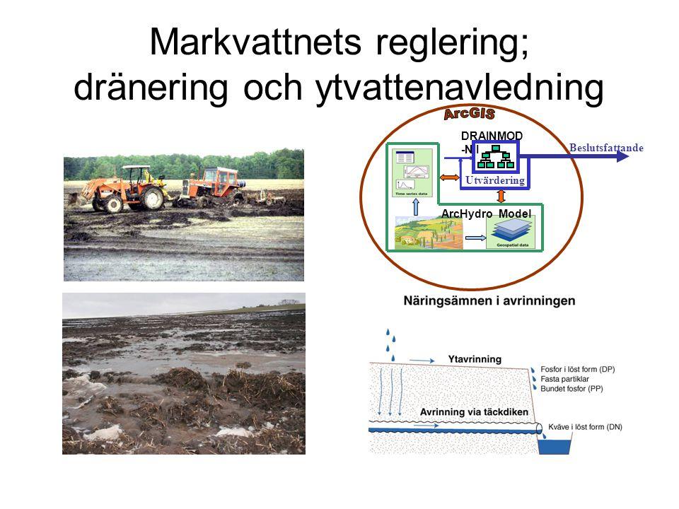 Markvattnets reglering; dränering och ytvattenavledning DRAINMOD -NII Utvärdering Beslutsfattande ArcHydro Model