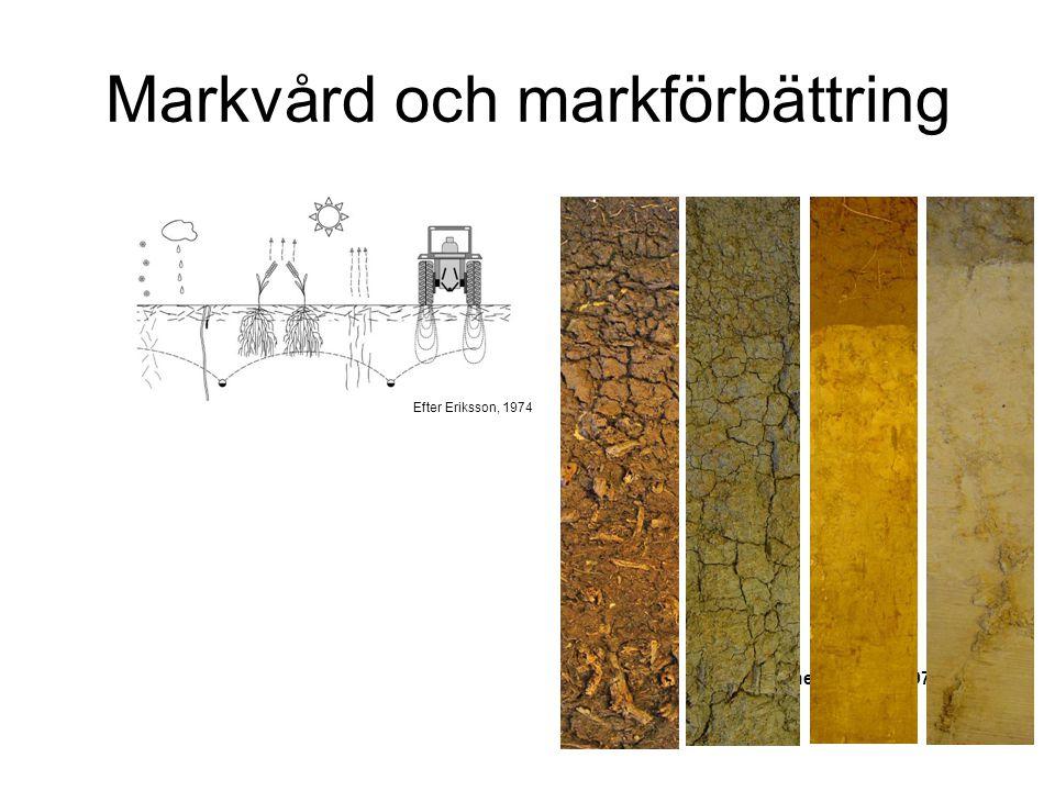 Markvård och markförbättring Efter Janne Eriksson, 1974 Efter Eriksson, 1974