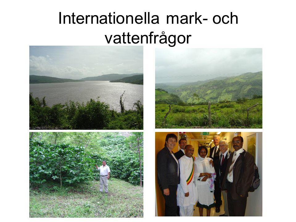 Internationella mark- och vattenfrågor