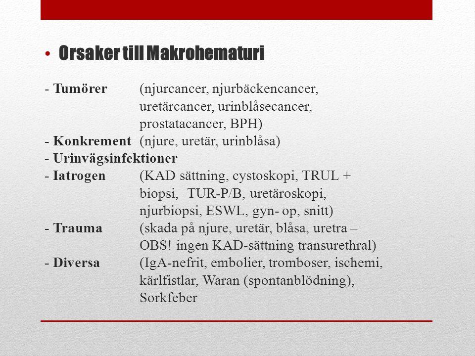 - Tumörer (njurcancer, njurbäckencancer, uretärcancer, urinblåsecancer, prostatacancer, BPH) - Konkrement (njure, uretär, urinblåsa) - Urinvägsinfekti