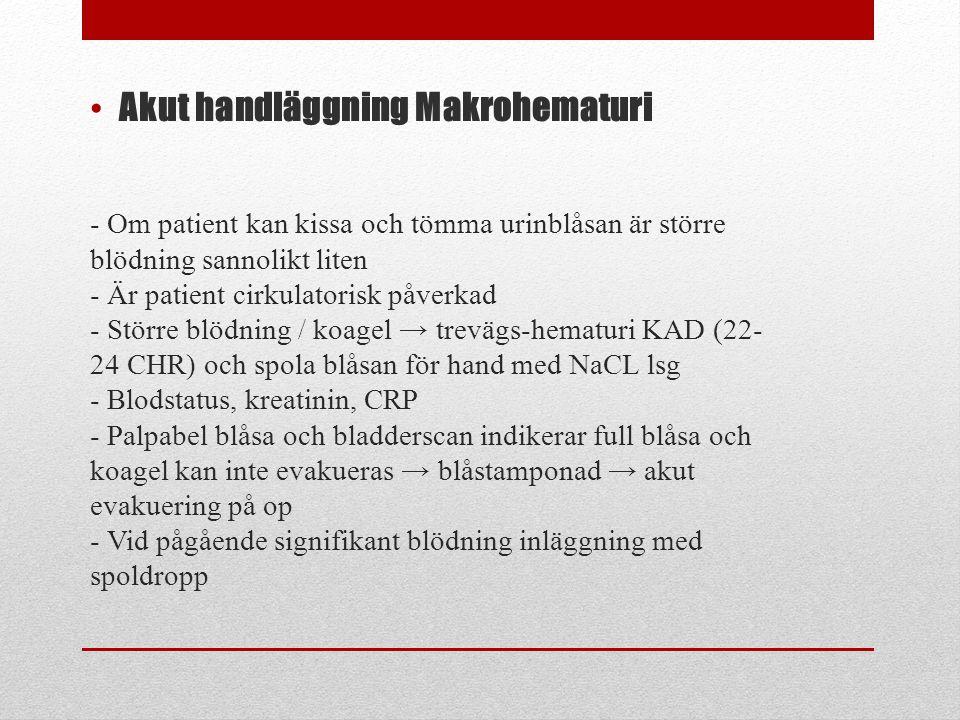 - Om patient kan kissa och tömma urinblåsan är större blödning sannolikt liten - Är patient cirkulatorisk påverkad - Större blödning / koagel → treväg