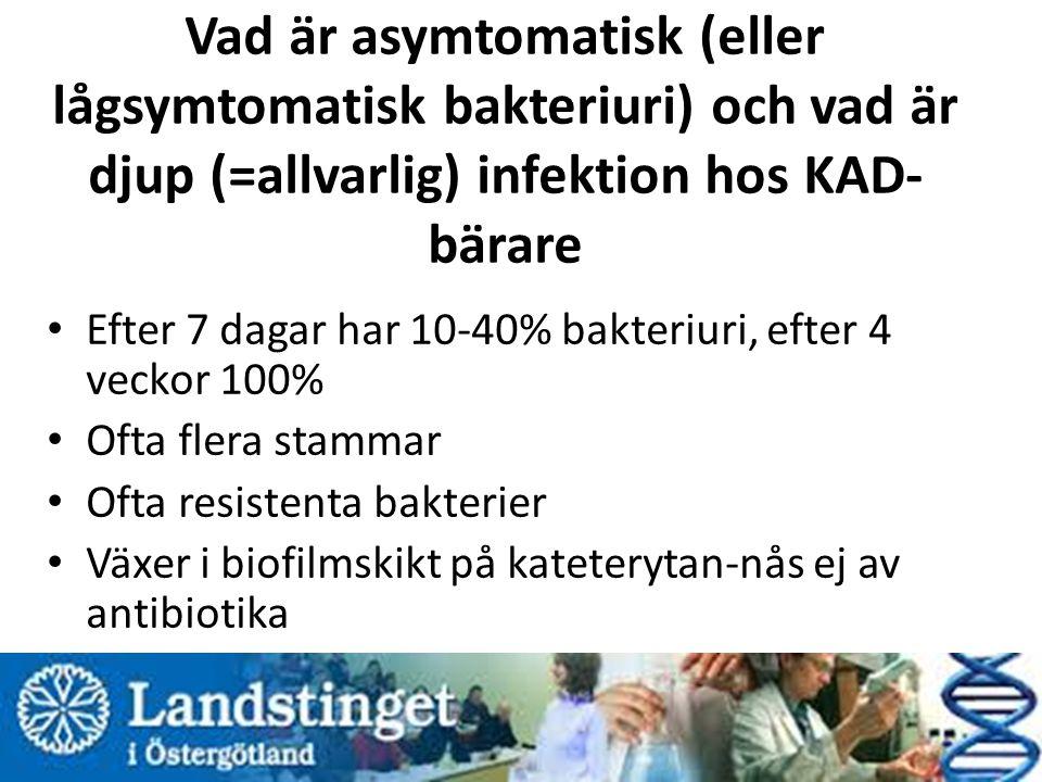 Vad är asymtomatisk (eller lågsymtomatisk bakteriuri) och vad är djup (=allvarlig) infektion hos KAD- bärare Efter 7 dagar har 10-40% bakteriuri, efter 4 veckor 100% Ofta flera stammar Ofta resistenta bakterier Växer i biofilmskikt på kateterytan-nås ej av antibiotika Ibland stenbildning i blåsan eller på katetern