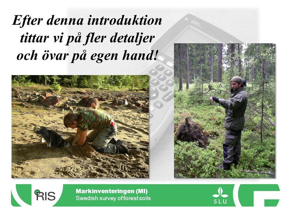 Markinventeringen (MI) Swedish survey of forest soils Efter denna introduktion tittar vi på fler detaljer och övar på egen hand!