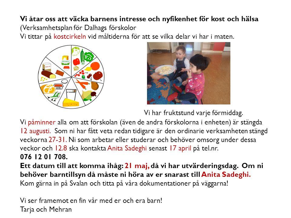 Vi åtar oss att väcka barnens intresse och nyfikenhet för kost och hälsa (Verksamhetsplan för Dalhags förskolor Vi tittar på kostcirkeln vid måltidern