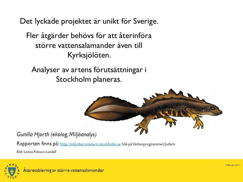 5 februari 2013 Återetablering av större vattensalamander Det lyckade projektet är unikt för Sverige.
