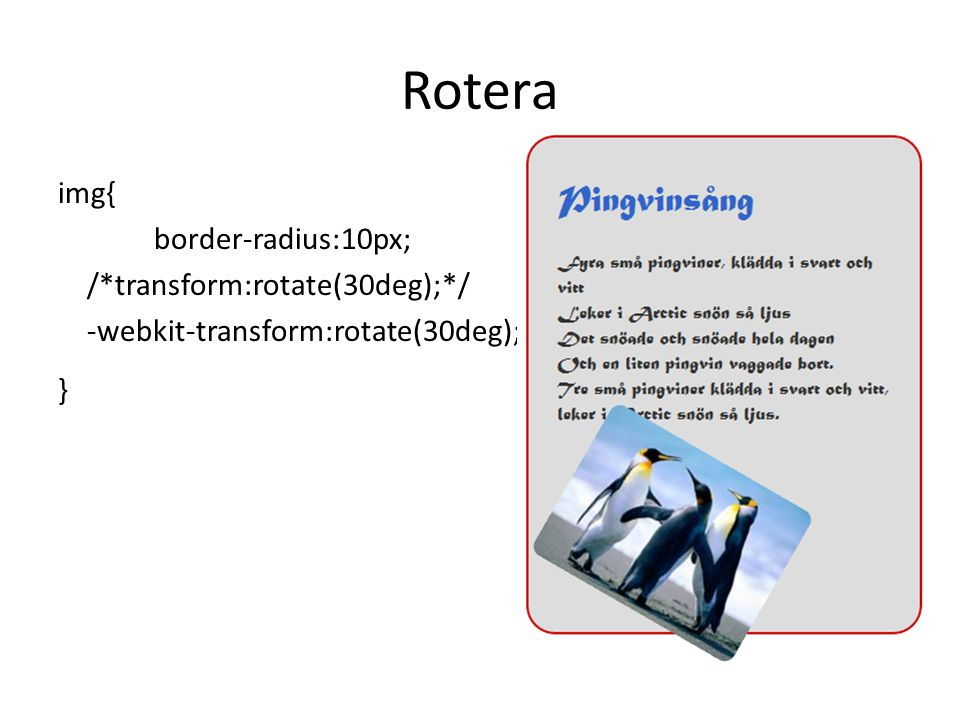 Rotera img{ border-radius:10px; /*transform:rotate(30deg);*/ -webkit-transform:rotate(30deg); }
