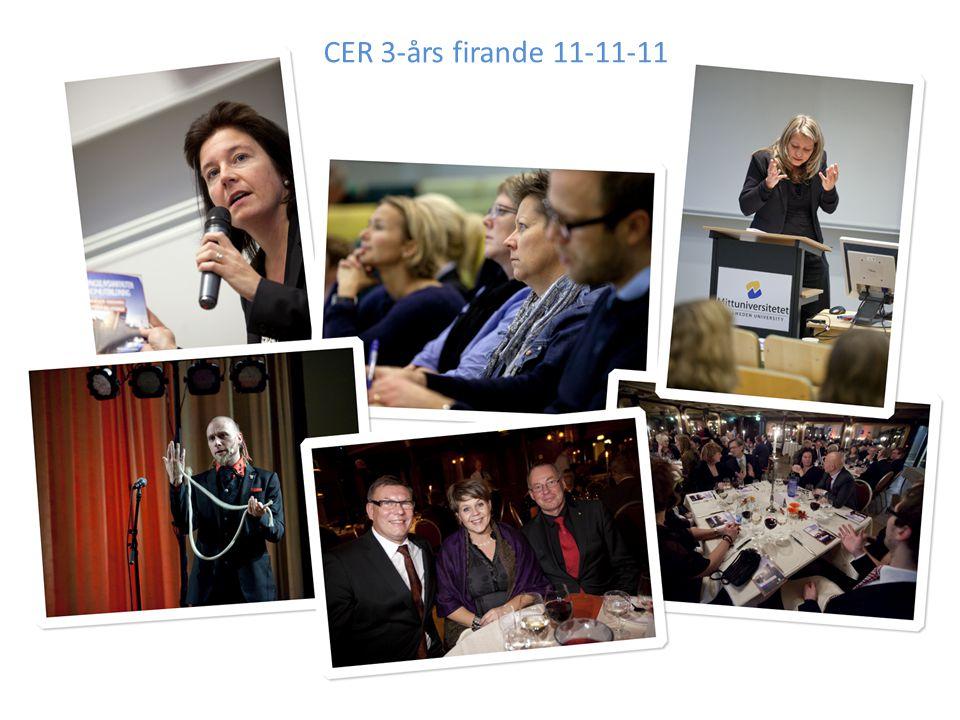 CER 3-års firande 11-11-11