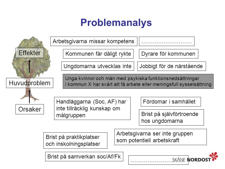 Problemanalys Orsaker Huvudproblem Effekter LFA-metoden Ungdomarna utvecklas inte Kommunen får dåligt rykteDyrare för kommunen Jobbigt för de närståen