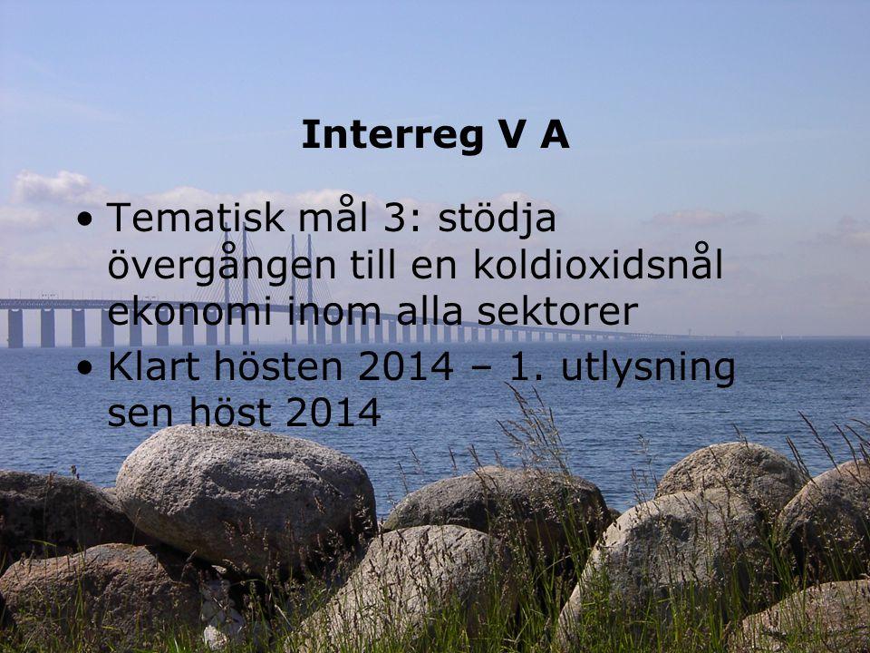 Interreg V A Tematisk mål 3: stödja övergången till en koldioxidsnål ekonomi inom alla sektorer Klart hösten 2014 – 1. utlysning sen höst 2014